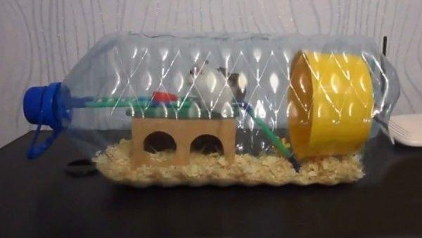 Jak zapewnić mieszkania dla chomika - zrobić dom dla zwierzaka furry dla siebie!