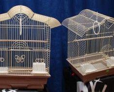 Piękne domy dla papug