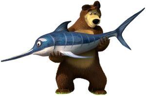 Kto jest silniejszy i szybszy niż niedźwiedź lub rekin