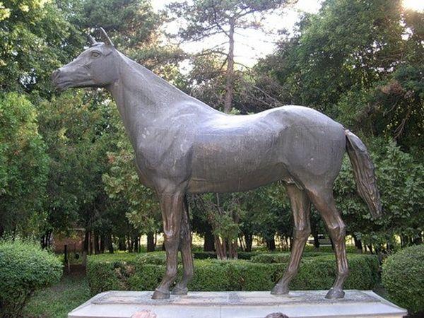 Konie legenda, podbił historia