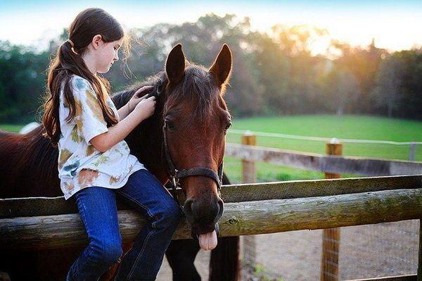Naukę jazdy konnej, czyli jak stać się profesjonalnym jeźdźca?