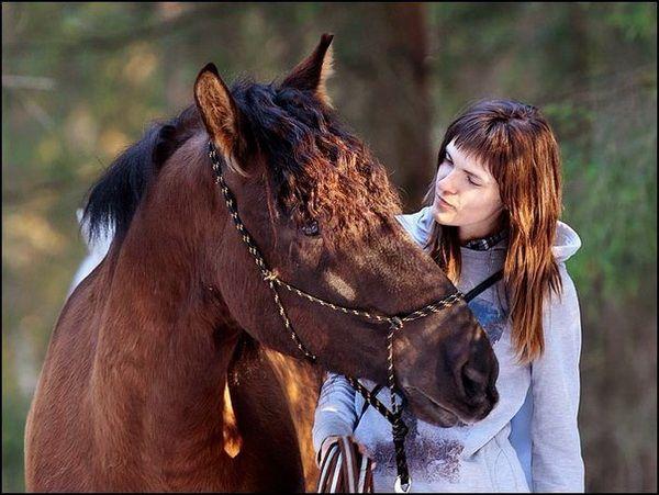 Opanuj sobie kantar dla konia