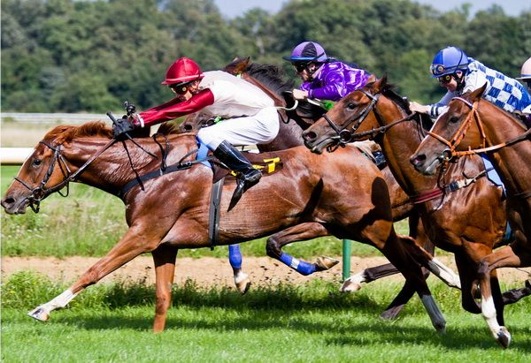 Rekordziści prędkość: Który koń jest najszybszy