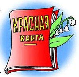 Zwierzęta w Czerwonej Księdze Uralu